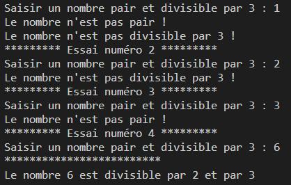 exemple d'affichage produit par l'algorithme programmé et exécuté