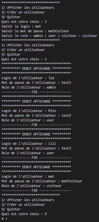 Exemple d'affichage produit par l'algorithme programmé